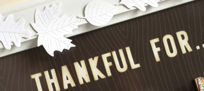 The MPO is Thankful For…